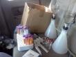 Moose looks on as I filter water samples in the backseat of the MSC van.