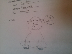 Even the fetal pig thinks I am a good TA! Thats all the gratification I need....