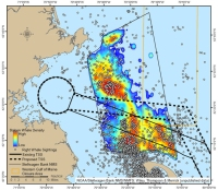 A map of Stellwagen Bank National Marine Sanctuary. Dots represent right whale sightings, solid lines indicate previous shipping lanes, dotted lines indicate new shipping lanes. stellwagen.noaa.gov