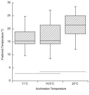Figure 5 jpeg